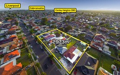 29 Ascot Street, Canley Heights NSW