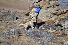 Trying to corall the Naughty Puppies for a picture (hannahsmith66) Tags: beartooth pass highway allamerican road montana wyoming trip summit