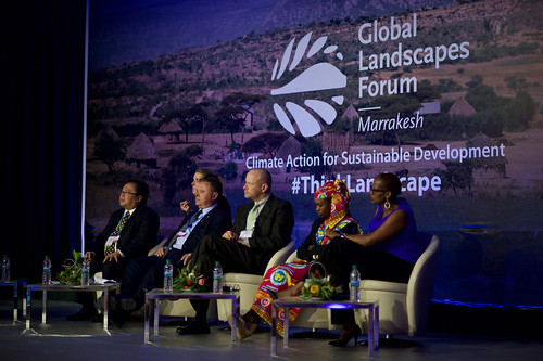 Welcoming plenary and roundtable: Climate meets landscape — from agenda to progress