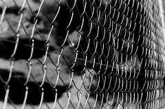 ALAMBRADA (ROGE gonzalez ALIAGA) Tags: blancoynegro nikond5000 70300mm monocromatica brillos sombras shadow lights brightness negro