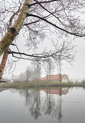 Misty morning, Norway (Vest der ute) Tags: g7x norway rogaland haugesund puddle house reflections mirror mist fog haze earlymorning trees fav25