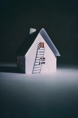 the escape... (CatMacBride) Tags: house window ladder escape night