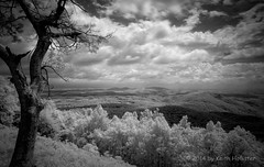 Untitled (HD_Keith) Tags: blackandwhite bw usa mountain nature ecology landscape blackwhite scenery mount va land infrared environment floyd environmentalism ecosystem rurallandscape