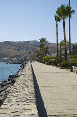 Home (lafargaa) Tags: beach port docks palms mexico ensenada baja