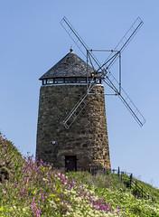 St Monans windmill (med777) Tags: windmill fife stmonans