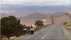 walking down the long and windy road (mhobl) Tags: street morocco maroc marokko antitatlas
