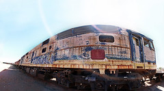 Ghost Trains, Derelict Diesel locos as far as the eye can see, await their fate at the Broken Hill railway siding, Broken Hill Railway Station, NSW. (brettmichal Images) Tags: old panorama ex station metal train canon photo stitch diesel sigma rail railway trains 1d stitching siding scrap derelict 1224mm ghosttrain dg brokenhill locos mkiii f4556 hsm