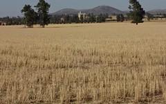 'BURALYANG' Lewes Rd and Sandy Creek Rd, Tallimba NSW