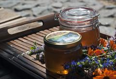 honey & herbs (Rambynas) Tags: sweet honey herb lithuania lietuva rambynoregioninisparkas