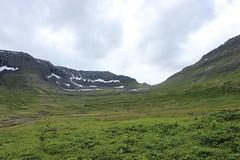 Way from Hælavík to Hornvik, Hornstrandir Nature Reserve (Westfjords)
