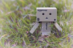 IMG_0282 (angelwulf_BJD) Tags: man toy robot amazon box cardboard figure figurine articulate danbo danboard