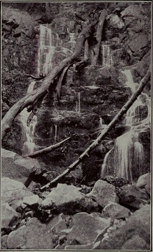 "Image from page 59 of ""The Palisades of the Hudson : their formation, tradition, romance, historical associations, natural wonders and preservation"" (1909)"