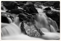 The river  Nicola Roggero (Nicola Roggero) Tags: longexposure water river nikon bruce fiume piemonte piedmont theboss springsteen prali germanasca d5300 bestcapturesaoi elitegalleryaoi nicolaroggero