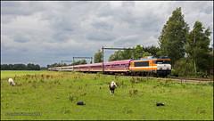 10 Augustus 2014 - Locon 9908 - Teuge (EnricoSchreurs) Tags: train canon eos july zug juli sziget 9900 trein teuge 2014 600d 9908 locon