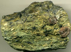Glaucophane schist (Attic-Cycladic Crystalline Complex, Cretaceous to Eocene metamorphism, 78 to 42 Ma; NW end of Siphnos Island, western Cycladic Islands, southwestern Aegean Sea) 4 (James St. John) Tags: aegean blueschist schist siphnos glaucophane
