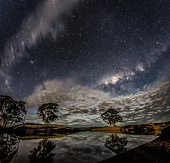 8mm SX Dam Stars (picturesbysteve) Tags: trees night canon stars farm australia southerncross fisheye wa 8mm westernaustralia milkyway 6d samyang fullframefisheye ©stephenhumpleby2014