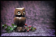 Wisdom Wood (timnic35) Tags: wood carving fantasy owl wise wisdom whimsical timnichols timnicholsphotography