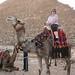 Giza Plateau_1124