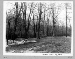 photo album 09264-01-ph022 (Olmsted Archives, Frederick Law Olmsted NHS, NPS) Tags: parks parvin