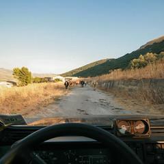 Come in un safari (pitri) Tags: safari guado sicilia torrente panda4x4