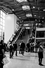 Many people, one passion (Elfensang) Tags: bw germany deutschland blackwhite cologne fair kln falcon messe nordrheinwestfalen photokina falke northrhinewestphalia schwarzweis fotomesse