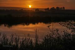 Burton Sunset (alundisleyimages@gmail.com) Tags: charity trees sunset water reflections bush hills naturereserve rspb nikon1755f28 nikond7100 burtonmerewetlands