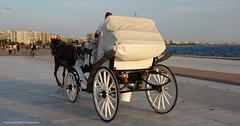 wagon - Sony RX100 (thanasispap20) Tags: sea summer people horse wagon dock sony greece macedonia thessaloniki 100 rx dscrx100