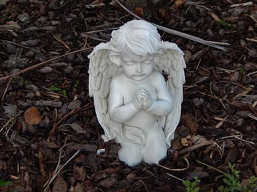 Praying in the Garden
