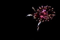 lilac firework (Justin van Damme) Tags: flower night dark purple fireworks firework boom lilac pow