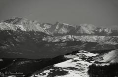 Montagne del Gran Sasso dal monte Fusconi (EmozionInUnClick - l'Avventuriero's photos) Tags: blackwhite bn montagna gransasso panorama