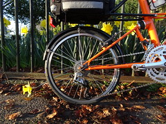 Autumn and Spring all-in-one (stevenbrandist) Tags: orange spring tsr27 tsr moulton moultonbicyclecompany quorn commute commuting bicycle spaceframe cycling fence explore