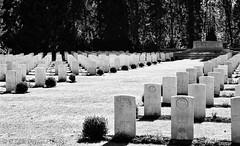 b&w.graveyard (C.Kalk DigitaLPhotoS) Tags: friedhof cemetery graveyard gravestone headstone grabstein friedhofohlsdorf hamburg ohlsdorf germany deutschland blackandwhite schwarzweis bw sw outdoor hamburgerfotofreaks