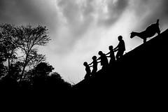 DSC02150 (Amlan Sanyal) Tags: india incredibleindia children streetphotography siliguri sony silhouette people blackandwhite amlan ngc