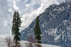 Mountains 5 ... (Bijanfotografy) Tags: nikon nikond800 nikon180mm28afd india sonamarg kashmir jk jammukashmir mountainside mountains snow