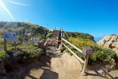 Torrey Pines State Reserve (luucckkyjohn) Tags: outdoors hiking sandiego beach sky flowers torreypinesstatereserve california gopro