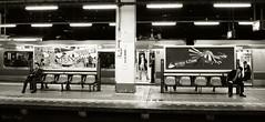 Platform panorama (DameBoudicca) Tags: tokyo tokio 東京 japan nippon nihon 日本 japón japon giappone shiba 芝 東京都港区 hamamatsuchō hamamatsuchōstation 浜松町駅 浜松町 はままつちょう railway järnväg eisenbahn ferrocarril chemindefer ferrovia 鉄道 tåg train zug tren treno 列車 man mann varón homme uomo 男 urban waiting phonecall mobilephone busy sitting platform railwayplatform perrong bahnsteig andén plataforma quaidestationdemétro quai banchina プラットホーム