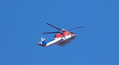 7K8A6709 (rpealit) Tags: scenery wildlife nature east hatchery alumni field hackettstown helicopter
