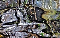 artist's palette (jeansmachines24) Tags: clyne stream spring2017 rushing tumbling colourful artistry movement blur artistspalette