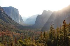 Sun Rising On Yosemite Valley (Robert F. Carter) Tags: yosemite yosemitenationalpark yosemitevalley tunnelview sunrise morning nationalparks california elcapitan halfdome crookedtreephotographicsociety robertcarterphotographycom ©robertcarter