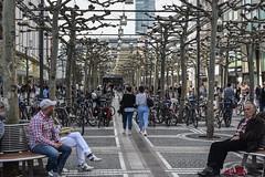 2017 Samstagmorgen auf der Zeil in Frankfurt (mercatormovens) Tags: frankfurt city zeil menschen platanen fusgängerzone einkaufen shopping