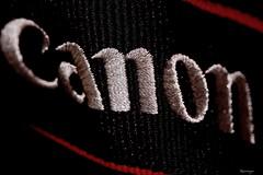 """Cloth/Textile""  Macro Mondays (kiareimages1) Tags: macromondays cloth textile beltcamera"
