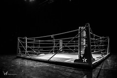 On the Ring. (GMphotographie) Tags: blackandwhite blancetnoir boxeur nikonfr nikon photohrapher photographe ring starleague mma fight winner france sport victoire young frenchboy muscular reportage reporter gmphotographer thepunisher dark boxer combat