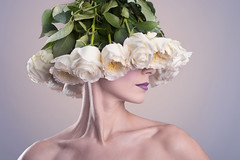 Bouquet_de_roses_blanches (Thunder_Bob) Tags: photographie bellelumiere entreprise flash particulier professionnel qualité strobist studio