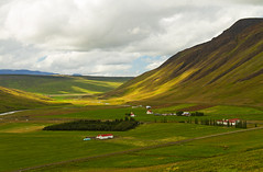 Backdrops (Matt Champlin) Tags: iceland farm farming rural life nature green lush summer canon 2016 home house adventure exotic icelandic peaceful amazing fields greenfields growing mountains