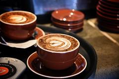 Latte Art at Sydney Opera House (zenseas) Tags: sydney australia drink coffee latte milk art artwork java operahouse cool bokeh cream heart heartshaped odor smell morning breakfast javajoe aroma