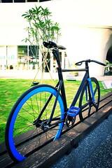 TAIWAN FIXEDGEAR SHOP OZOTW X AFF 11 COMPLETE BIKE X OSPOKE IN BK  X CINELLI CARBON SEAT POST X SAN MARCO SADDLE X AG5 CNC CRANKSET IN BK X OZOTW 2542 BULLHORN BAR IN BLACK (OZOTW) Tags: green bicycle shop 50mm cycling aluminum asia track raw meetup taiwan gear fork tire cap ag frame singlespeed fixed taichung fixie fixedgear gt carbon custom velodrome slope pursuit mash sanmarco skid lug ozo 2014 aff1 aff2 aff3 chainlock bottombracket 4130 cinelli 700c madeintaiwan 2013 6066 steelbike chromoly 46t completebike kingheadset tricktrack carbonrim bullhornbar barspinable ozotw srams80 wwwozotwcom 4130steel slopeframeset tpuvelcrotoestrap eurobottombracket 40mmdeeprim affframeset ospoke