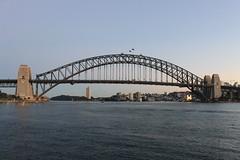 Sydney June 2014 (mertie.) Tags: sydneyharbour sydneynsw