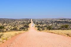 C26 road, Nambia (jbdodane) Tags: africa bicycle c26 cycletouring cycling cyclotourisme day617 dirtroad gravel khomashochland namibia roads velo freewheelycom jbcyclingafrica