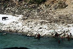 21-647 (ndpa / s. lundeen, archivist) Tags: nepal people color film water animal kids rural swimming swim 35mm river children 21 nick watersedge nepalese 1970s 1972 himalayas nepali dewolf riversedge localpeople nickdewolf photographbynickdewolf ruralnepal reel21 hillyregion