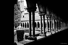 Priest's line (Ray Delrone) Tags: white black church noir tech sur priest arles roussillon eglise priere cloitre prier blacn